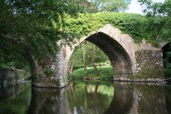 Le Pont Neuf 2010 (J Herve)