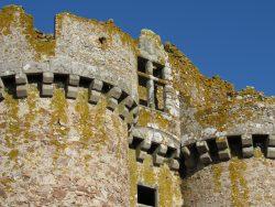 Château de l'Ebaupinay 15