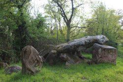 dolmen 6 (mr gérard)